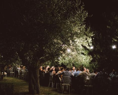 table dans l'oliveraie